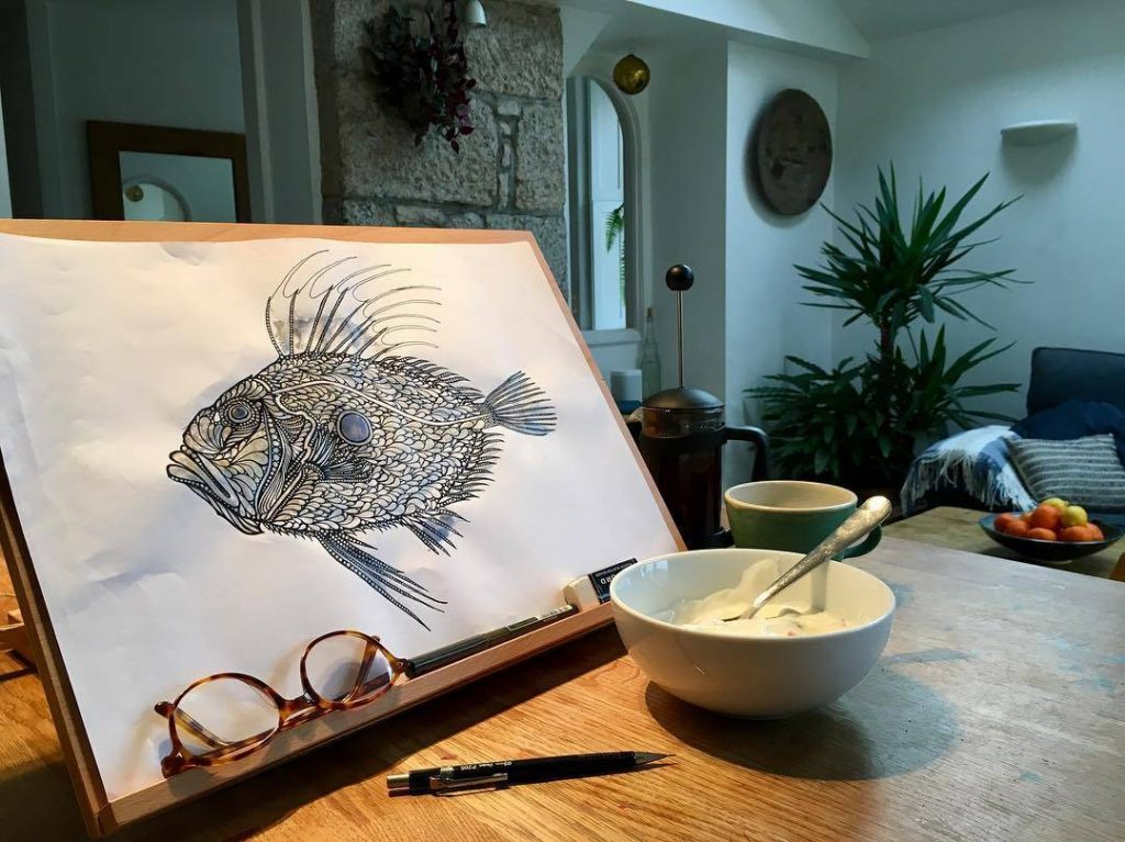John Dory Drawing by Stevie McCrindle